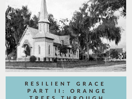 Resilient Grace Part II: Orange Trees Through Influenza