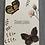 Thumbnail: Schmetterlinge - Dankeschön
