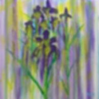 Iris Explosion_edited.jpg