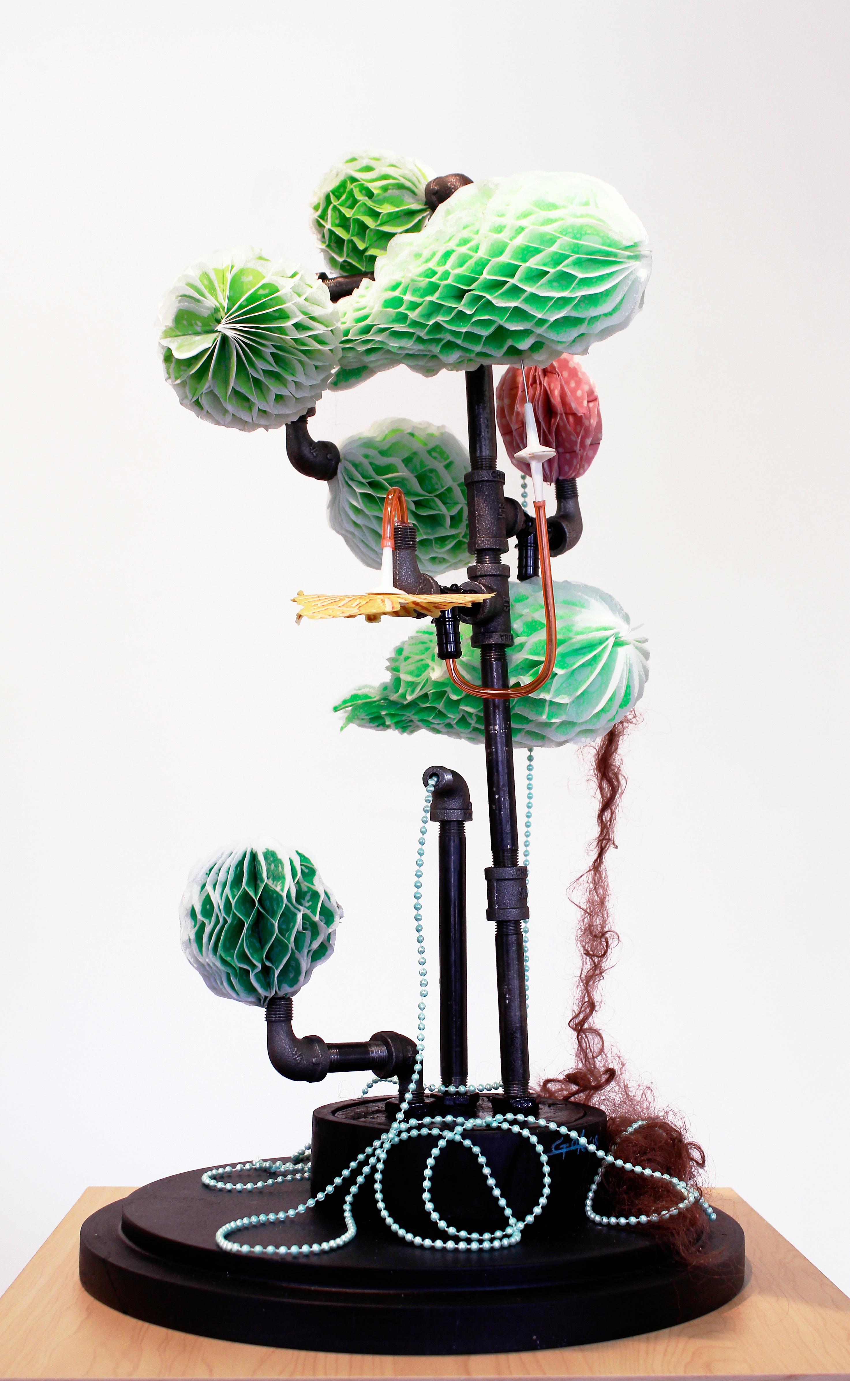 trans-plant 2