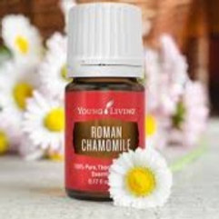 Roman Chamomile Essential Oil 5ml