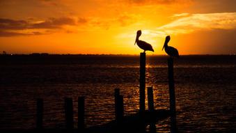 SPI_Sunset-11.jpg