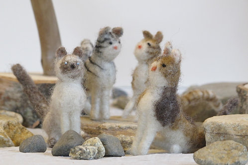 Cats  (sold individually)