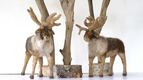 Iceland Reindeer  (sold individually)