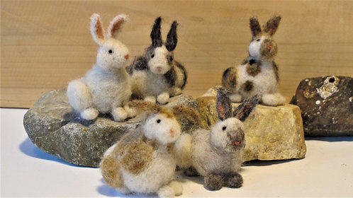 Specialty Rabbits  (sold individually)