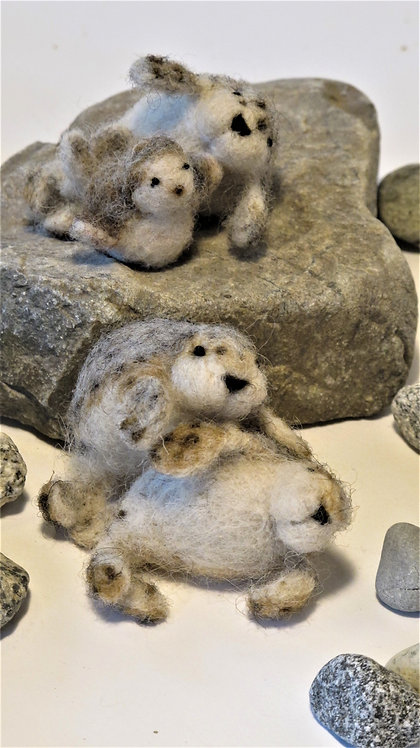 Harbor seals - Adult  (sold individually)