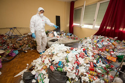 Nettoyage insalubre diogène Balma