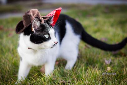 Cowboy Tony-1-2.jpg