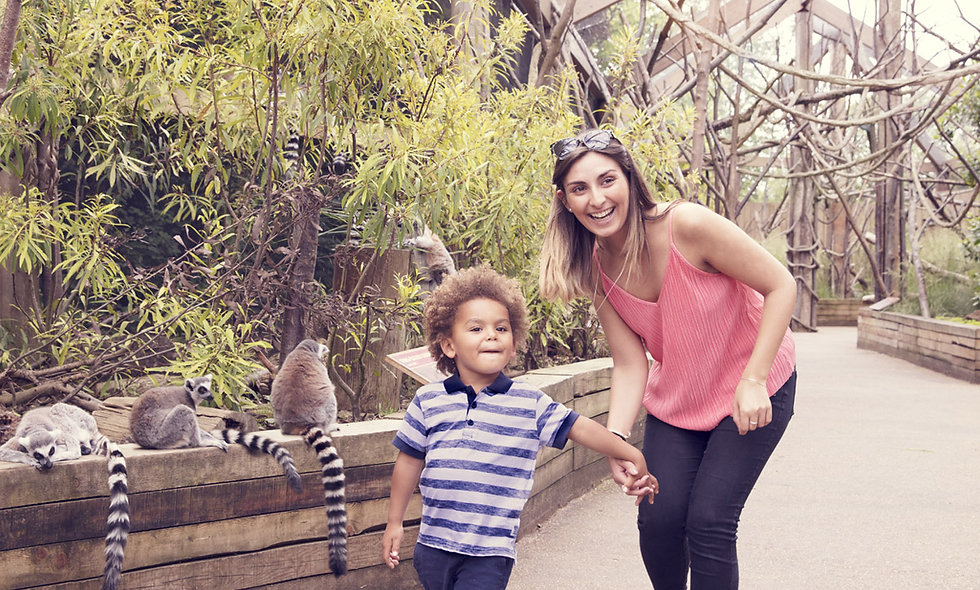 Visit to ZSL London Zoo and Dining at Rainforest Cafe for Two
