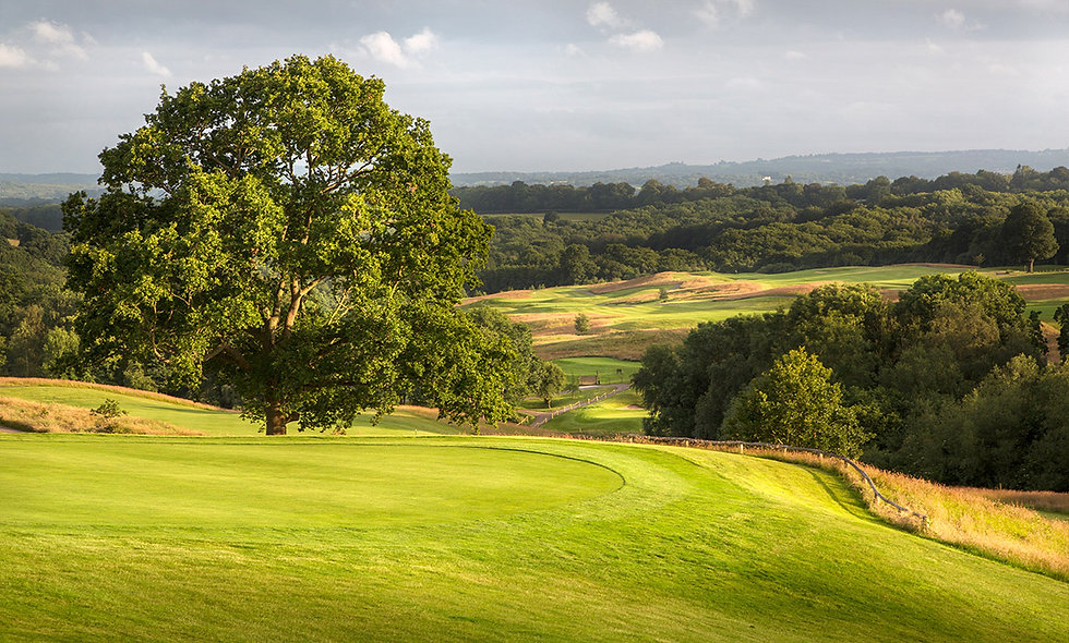 Round of Golf on the Dale Hill Old Course for One