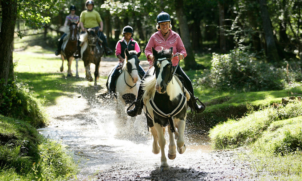 One Night Horse Riding Break for Two