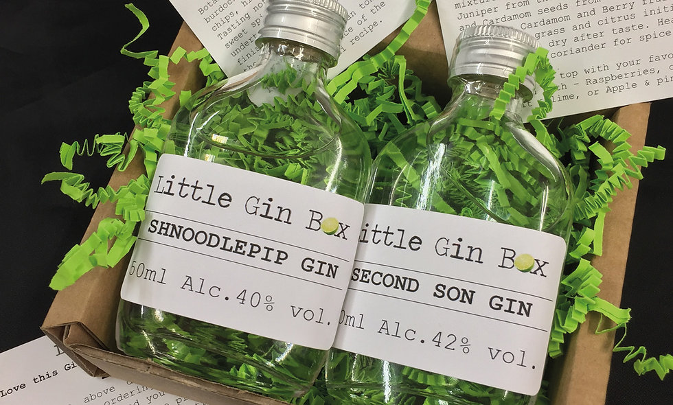 Twelve Months Gin Subscription with Little Gin Box