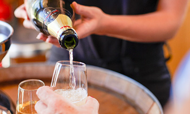 Vineyard Tour, Wine Tasting and Three Course Dinner