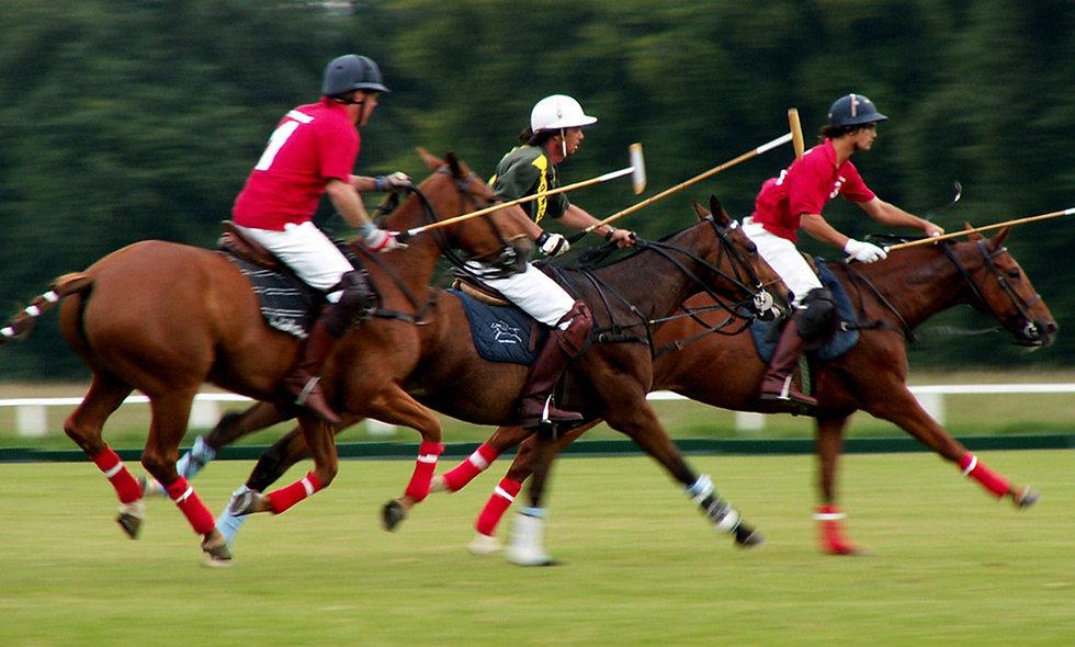 Discover Polo at Westcroft Park Polo Club