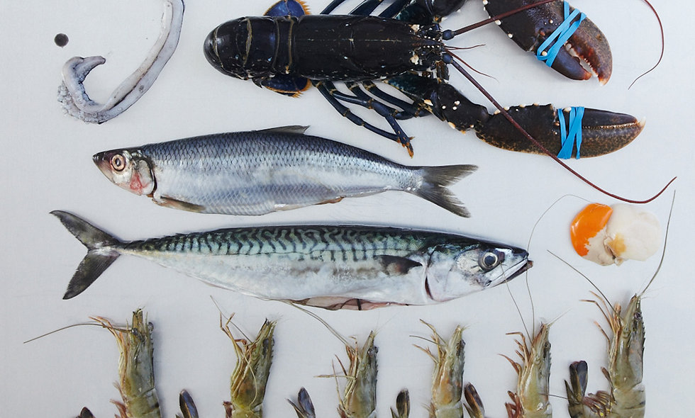 The Ultimate Fish and Shellfish Class at the Cookery