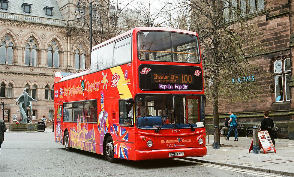 Family Hop on Hop off Sightseeing Bus Tour
