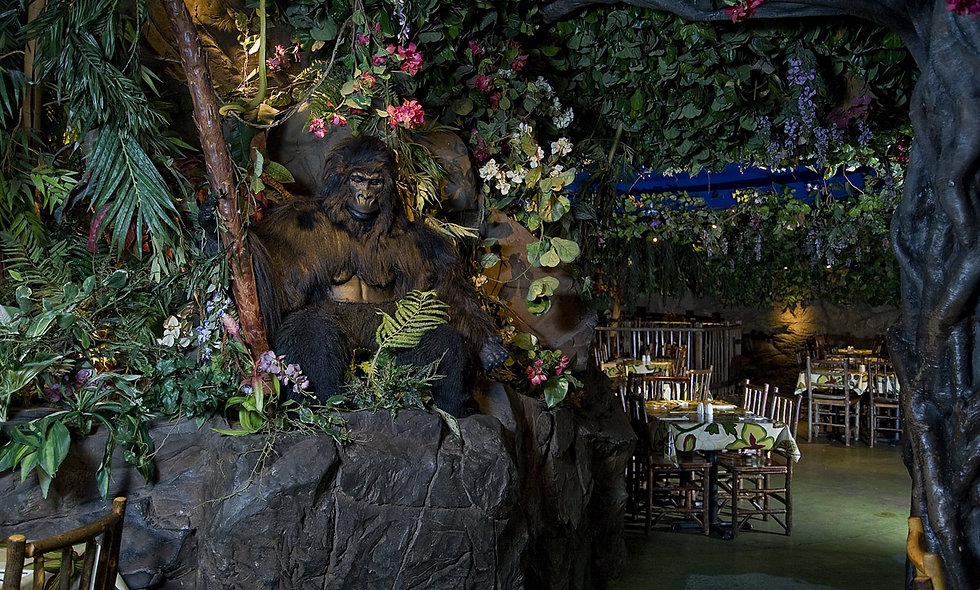 Rainforest Cafe Three Course Dining Experience with Wine for Two