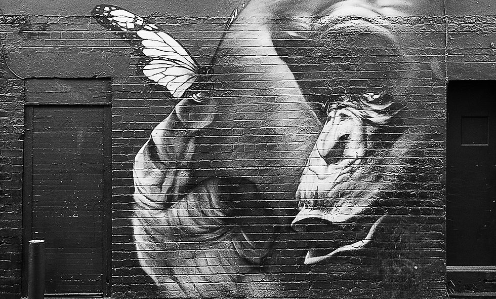 London Street Art Photography Tour for Two