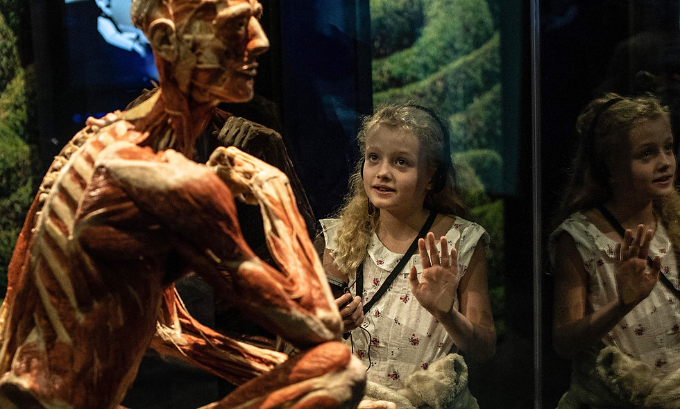 Family Visit to BODY WORLDS London Museum Experience