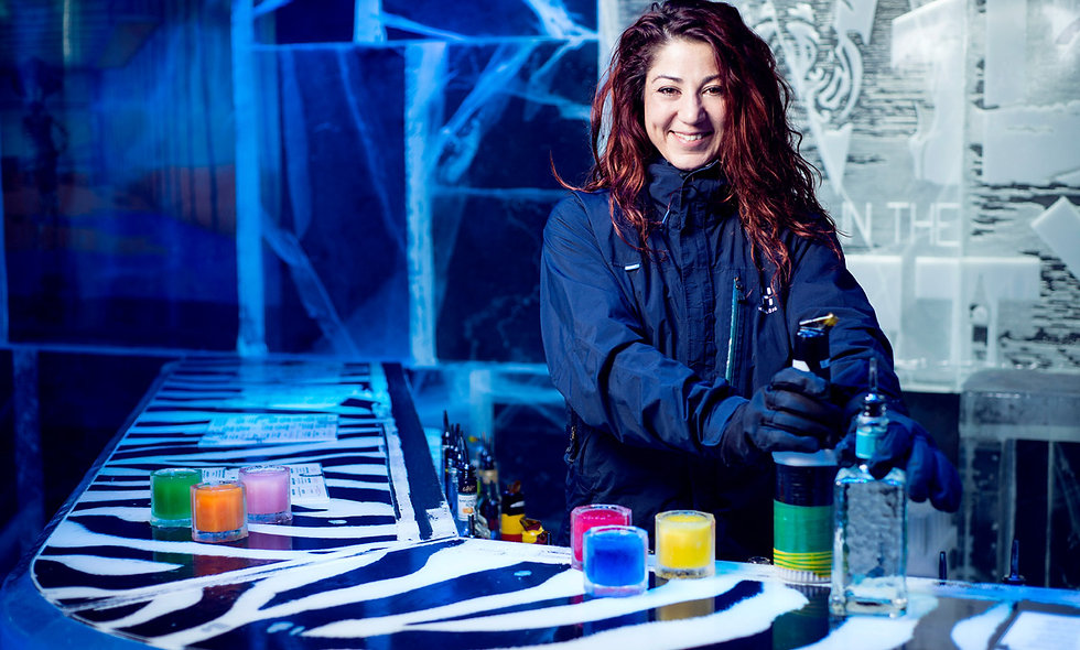 Ice Bar Experience with Cocktails and Three Course Meal
