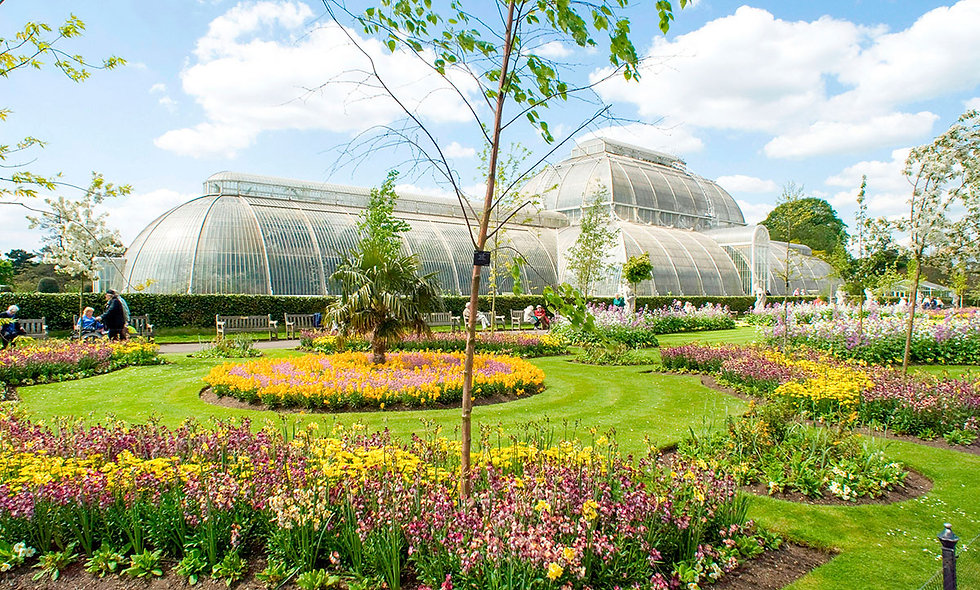 Family Visit to Kew Gardens and Palace for Two Adults