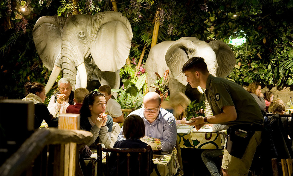 Rainforest Cafe Two Course Family Dining Experience.