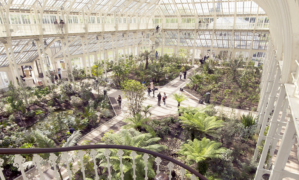 Visit to Kew Gardens and Palace with Explorer Tour