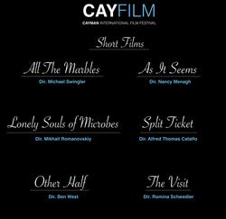 CayFilm International Film Festival