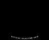 """As It Seems"" official selction laurel from the Pasadena Intenatonal Film Festival"