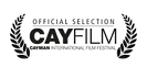 """""""As It Seems""""offical selection laurel from Cayfilm Cayman Intenational Film Festival."""
