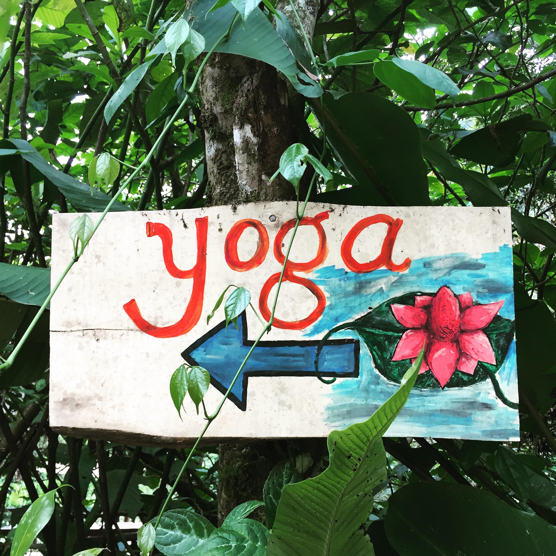 Yoga- this way!