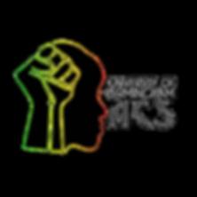 African & Caribbean Society