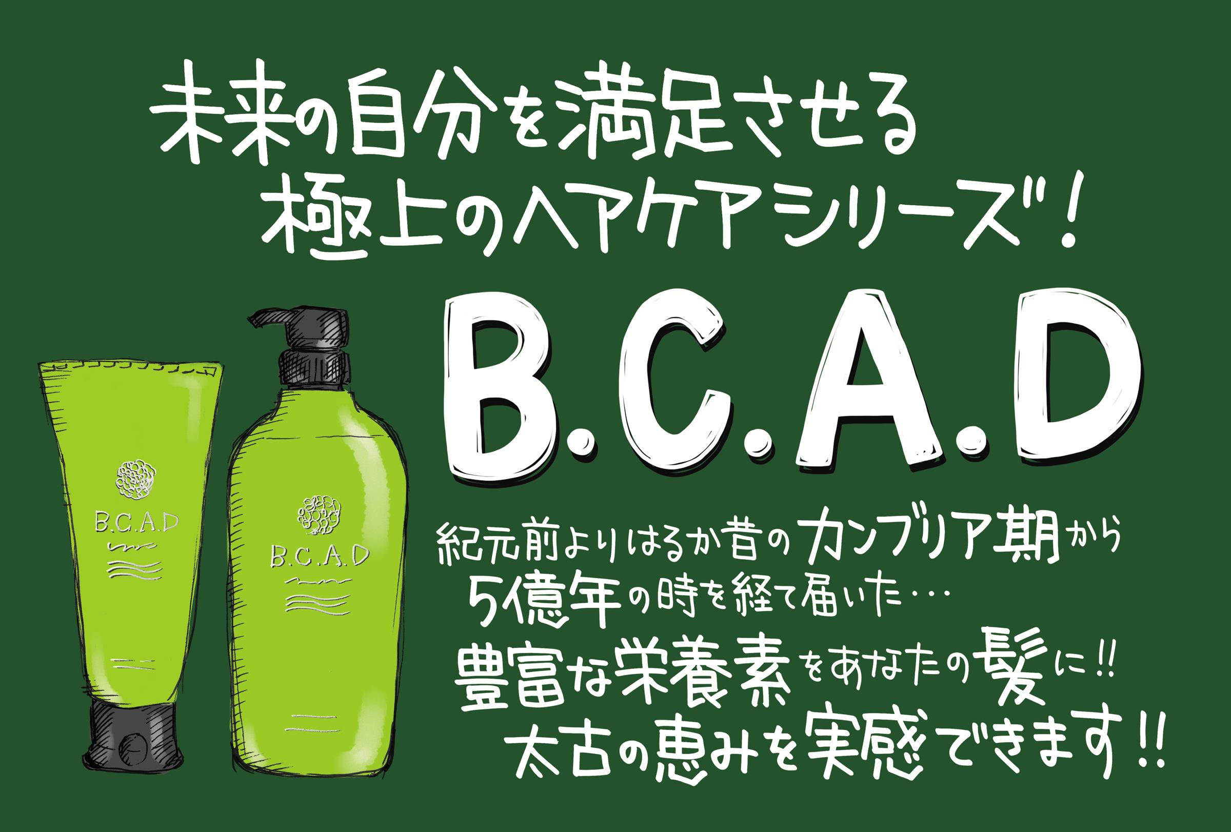 2-BCAD_A