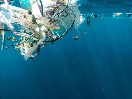 Jūlijs Bez Plastmasas: 2 ieteikumi plastmasas samazināšanai