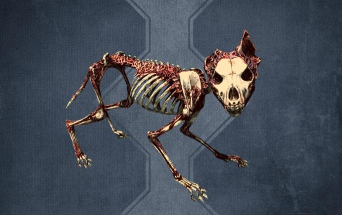 Bone Wolf - 200 Credits