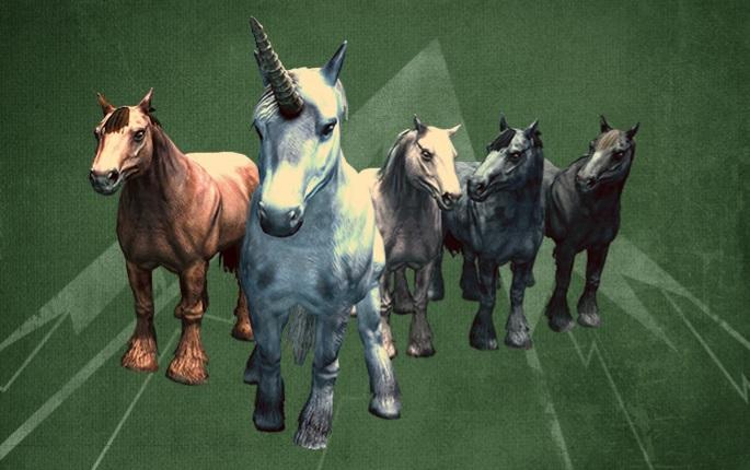 Wild Horses - 500 Credits