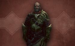 Elven Hunter Armor