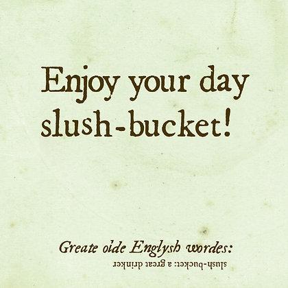 slush-bucket old english word for a great drinker