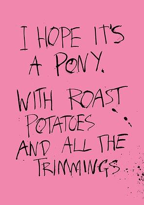 i hope it's a pony joke christmas card