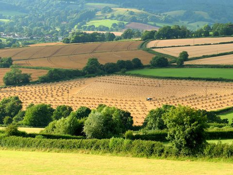 Why Devon is great for a UK break this autumn