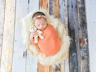 fotógrafa newborn em florianópolis