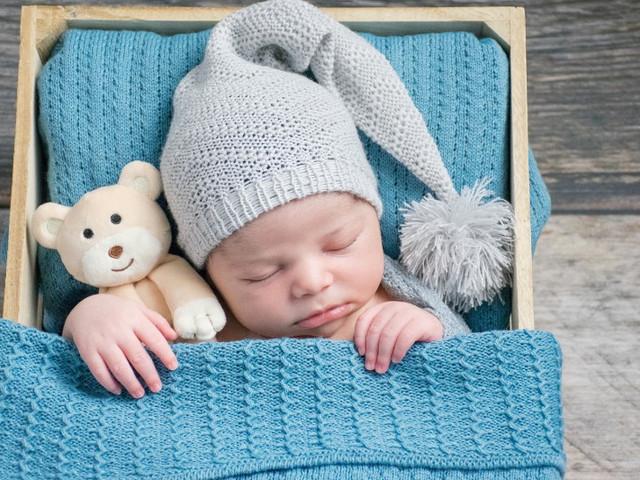 ensaio newborn kobrasol