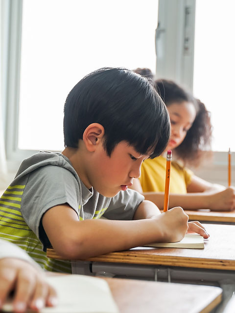 Best private tuition services - The Tuition Master