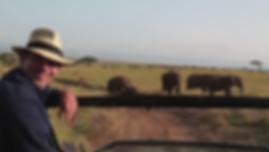 On Safari.png
