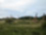Screen Shot 2020-02-10 at 3.51.47 PM.png