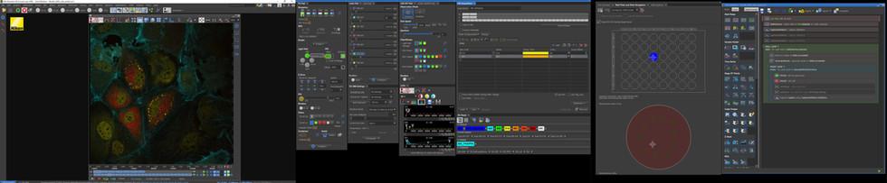 screenshot_NIS_Elements.jpg