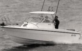 boat_profisher22_400250_stable.jpg