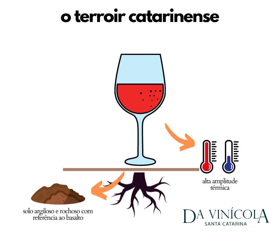 terroir catarinense