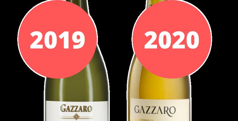 Gazzaro Chardonnay Degustação Vertical Safras 2019 e 2020