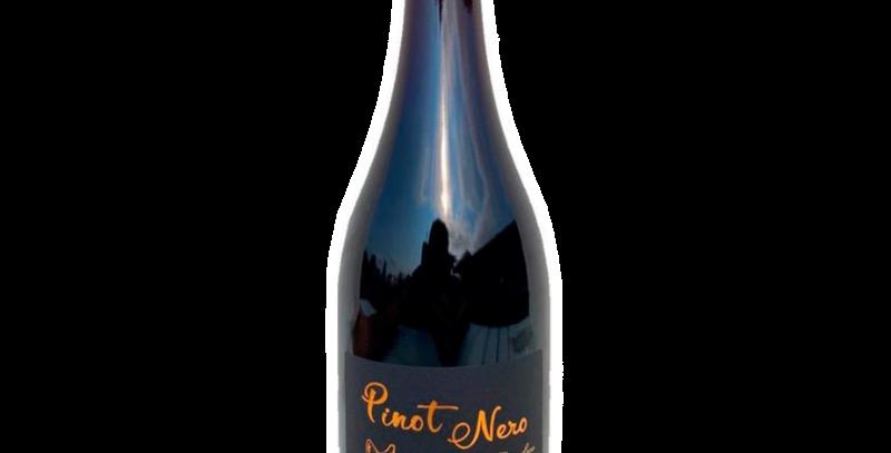 Villaggio Conti Pinot Nero 2019